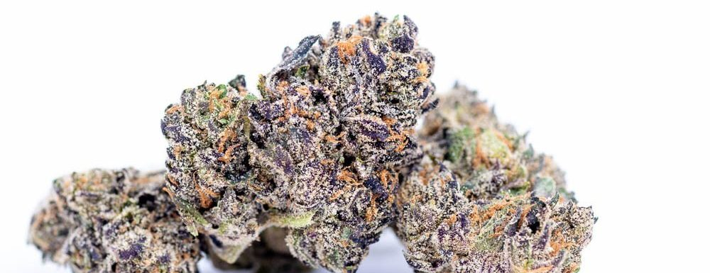 purple punch pictures